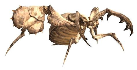 doodlebug insect wiki antlions ffxiclopedia the xi wiki