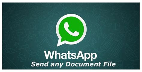 format video support whatsapp whatsapp to support all file types pdf docx doc ppt on