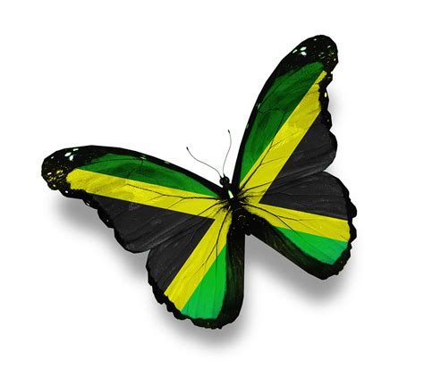 jamaican flag colors free jamaican coloring pages