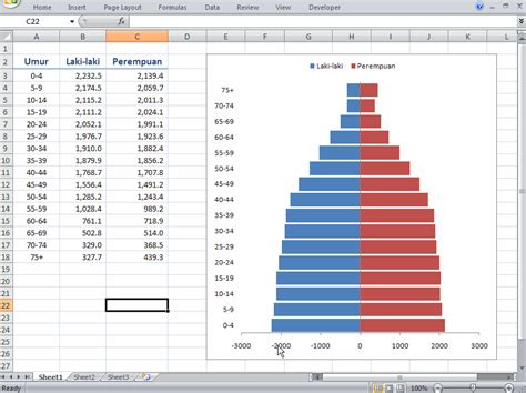 cara membuat layout ruangan dengan excel cara membuat grafik piramida penduduk dengan excel