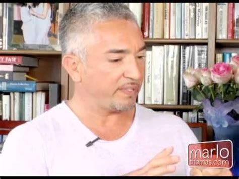 cesar millan how to your 1000 ideas about cesar millan on