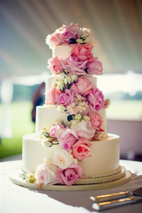 Show Me Some Wedding Cakes by Show Me Your Wedding Cakes