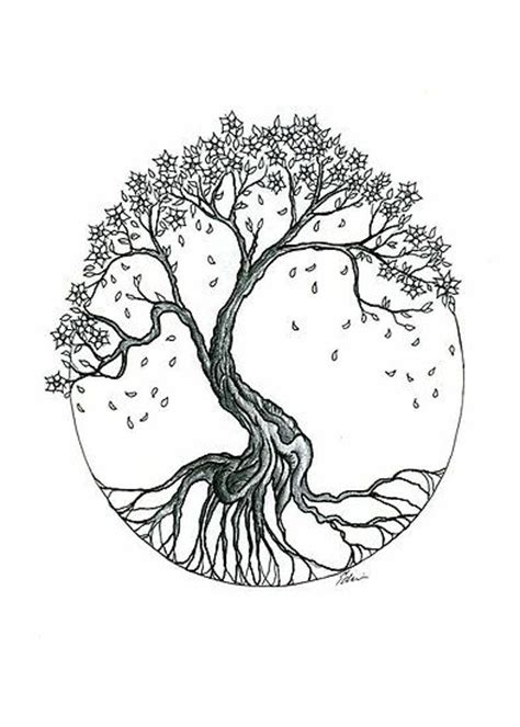cherry blossom tree drawing google search tattoo