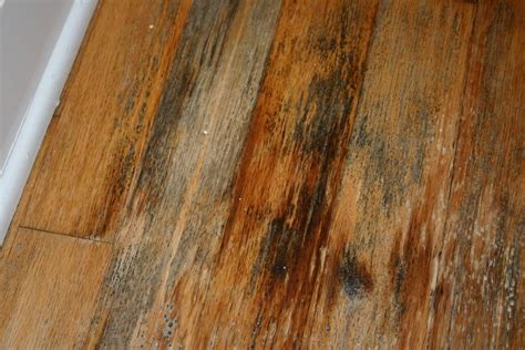 removing mold from hardwood floors real estate in don callahan may 2013