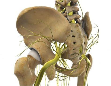 knieschmerzen beim liegen h 252 ftschmerzen und leistenschmerzen richtig verstehen