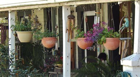 tanaman pot gantung  halaman rumah  sempit
