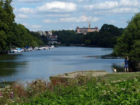thames river near hounslow the river thames near twickenham 169 mat fascione