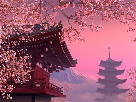 nature  screensavers blooming sakura  screensaver