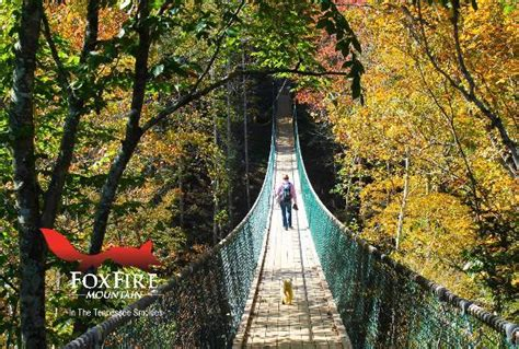 swinging bridge tennessee wilderness at the smokies sevierville tn address