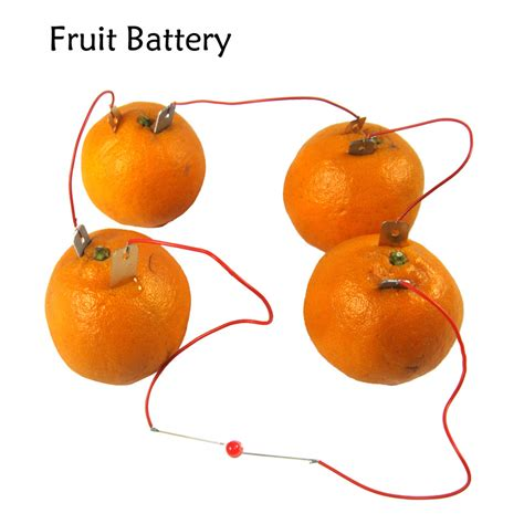 fruit battery compare prices on fruit battery materials shopping