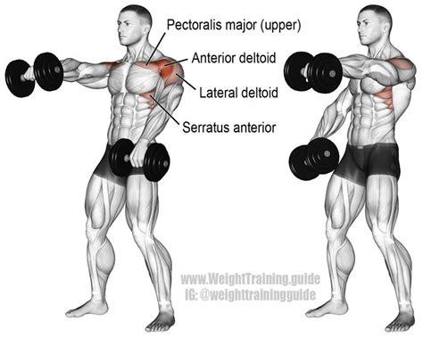 17 best ideas about deltoid workout on muscles