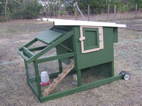 how chicken tractors can increase egg production and get brighamcitychickens public input at next planning