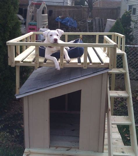 how to build a nice dog house 25 best ideas about build a dog house on pinterest puppy day care diy dog yard and