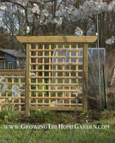 Build An Arbor Trellis building an arbor style trellis growing the home garden