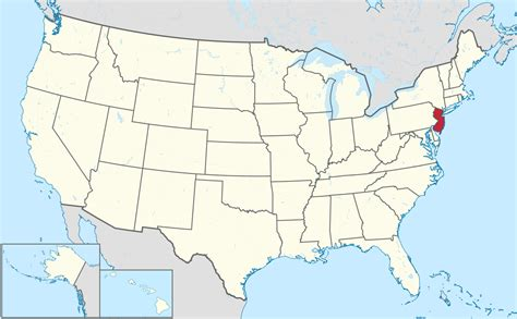 a to z the usa new jersey state flower file new jersey in united states svg wikimedia commons