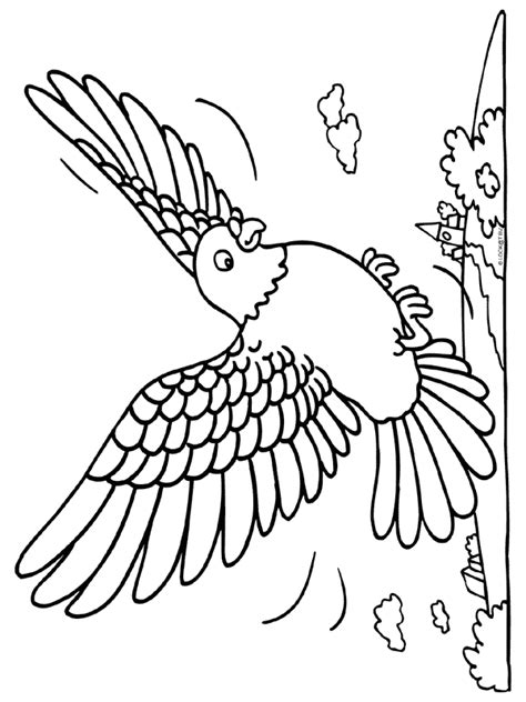 free coloring pages of baby bird