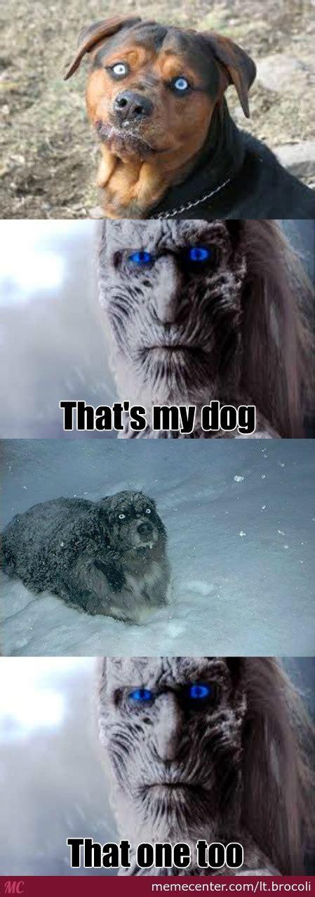 White Walkers Meme - white walker dog by lt brocoli meme center