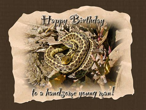 Wood Wall Decor Sayings Boy Birthday Greeting Card Baby Garter Snake Photograph