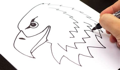 how to draw something easy boys how to draw a realistic bald eagle head art for kids hub