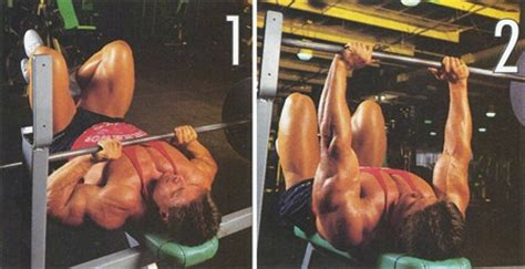 open grip bench press visual impact muscle building review triceps exercises