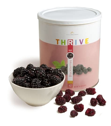 Dehydrated Food Shelf by 36 Best Images About Thrive On Home