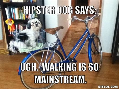 Hipster Dog Meme - 301 moved permanently