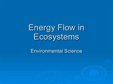 section energy flow in ecosystems energy flow in ecosystems