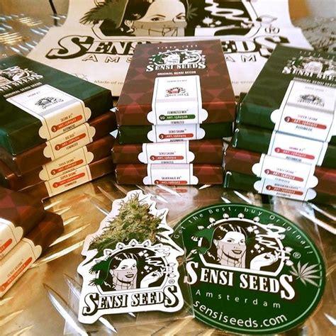sensi seeds bank sensi seeds breeder cannabis seedbank information