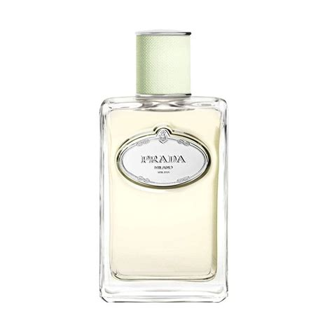 Parfum Ori 100 Ch Edp 80 Ml jual prada infusion d iris eau de parfum wanita original 100 ml harga kualitas