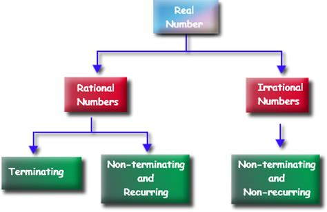 real numbers flowchart 8 ns 1 rational and irrational numbers mr hill s math