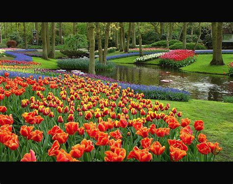 Pflanzen Garten Jux by Bastelideen Und Bastelmaterialien F 252 R Sie Schuhe Damen