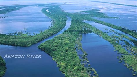 amazon river amazon river world largest river river youtube