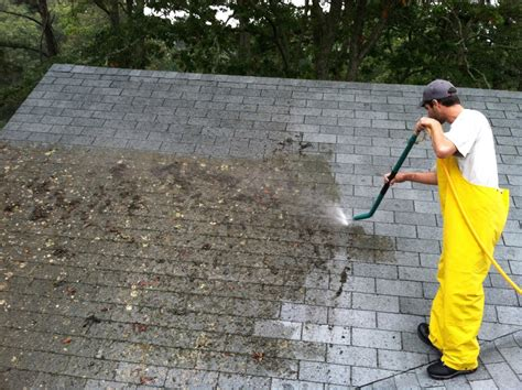 why is there moss on my roof roof cleaning and maintenance tips hirerush