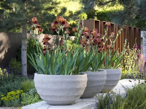 large container gardens using large garden containers