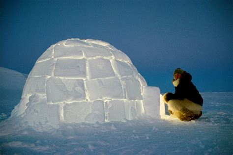 Dog Decorations For Home by Kajutaq Avike An Inuit Hunter About To Enter An Igloo He