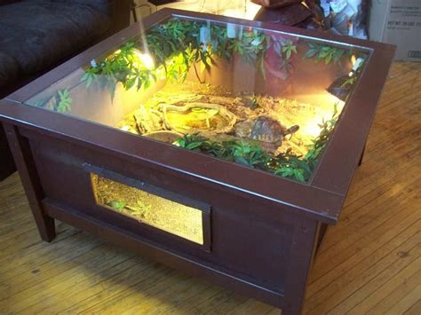 Aquarium Coffee Table Diy The 25 Best Ideas About Tortoise Table On Pinterest Turtle Table Tortoise Habitat And Turtle