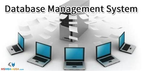 M S University by Ms In Database Management System Ms In Dbms