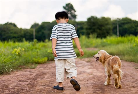 when can i start walking my puppy teach your child to the singapore s child