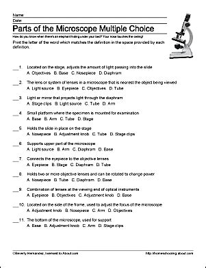 using a microscope worksheet learn about microscopes with free printables