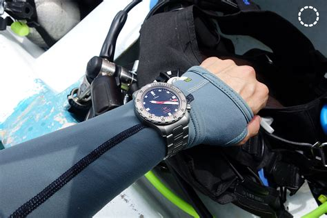 Real World Test: Diving with the Rolex Submariner, Sinn U1, Seiko Turtle & Prospex PADI   SJX
