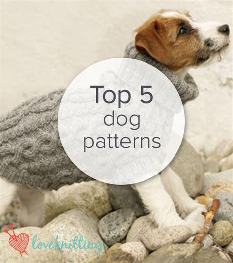 knitting pattern dog sweater large top 5 free dog sweater knitting patterns dog free dogs