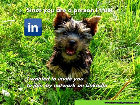 How To Search For On Linkedin Without Them Knowing Networking Alert How To Connect On Linkedin Without Trusting Strangers The Karmic