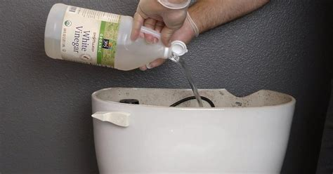 cleaning a bathroom with vinegar he pours vinegar in his toilet tank and flushes the