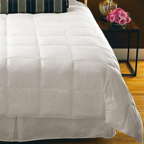 lightweight down comforter queen down inc cambric cotton down alternative comforter