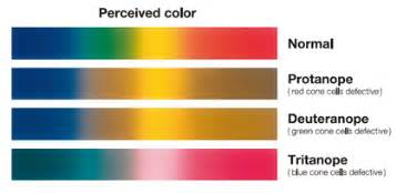 symptoms of color blindness color vision defects achromatopsia color blindness