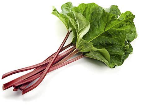 ist rhabarber obst saurer st 228 ngel der rhabarber gesundheit ern 228 hrung