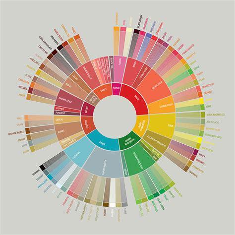 SCAA Coffee Taster's Flavor Wheel » Brandmeesters