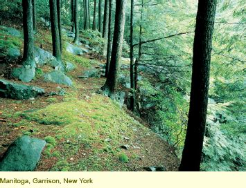 Landscape Design Elizabeth Barlow Rogers January April 2007 Nature And Place A Series Of