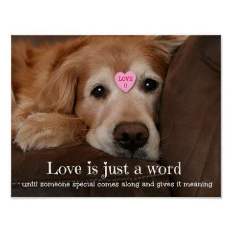loving golden retriever golden retriever is just a word poster peace so true and galleries