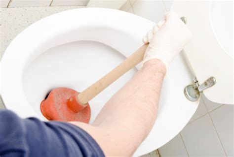 Alat Pembersih Pipa Paralon mengatasi wc met tanpa disedot bersihbersih